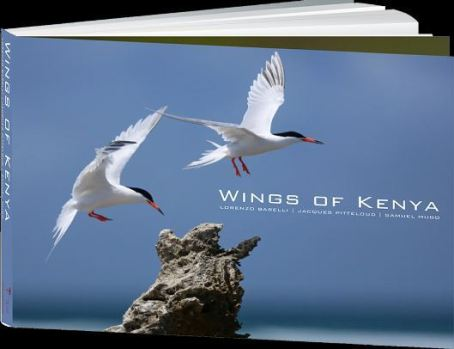 Wings of Kenya | Image via Nature Kenya Website